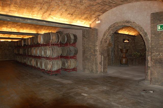 03 paramètres à ne pas négliger dans une cave à vins